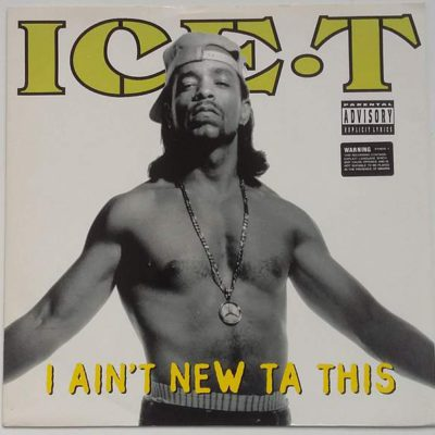 ice-t - i ain't new ta this 1